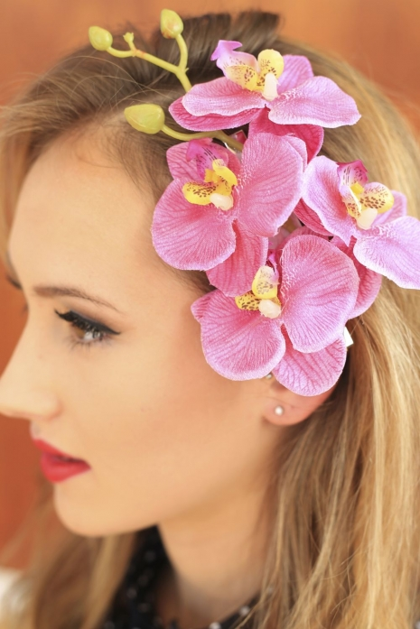 Paradise Pink Orchid